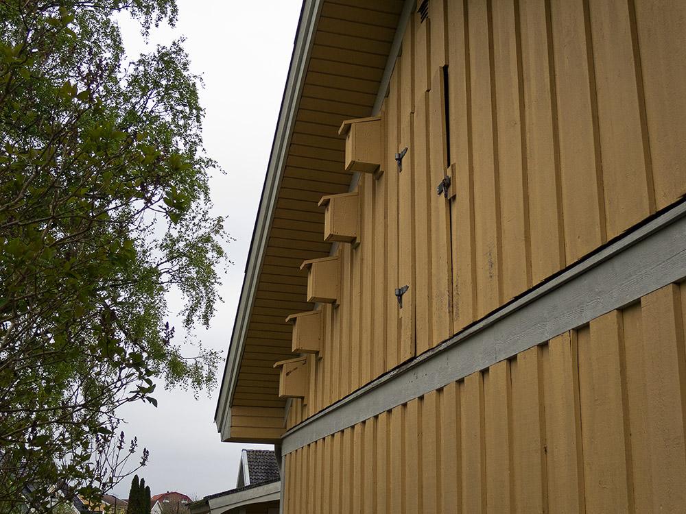 Ytterpanel borttagen i samband med reparation av spricka i grundmur. Platssnickrat platsbyggt plattsbyggd